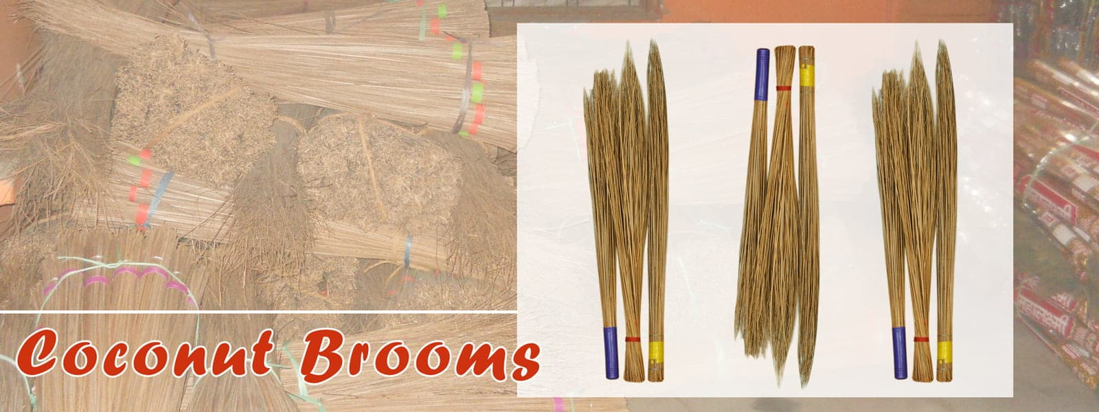grass broom manufacturers broom grass suppliers broom manufacturers india raw broom suppliers broom grass coconut broom coconut broom stick grass broom wholesalers grass broom raw material broom manufacturers in india raw material for making broom soft broom broom manufacturers in delhi coconut broom stick suppliers broom manufacturers grass broom manufacturers in india coconut palm broom broom making materials broomstick manufacturers coconut broom manufacturer grass broom raw material suppliers coconut broom suppliers best broom in india broom raw material broom material broom suppliers soft broom manufacturers broomstick manufacturers india broom coconut grass suppliers soft grass broom coconut leaf broom coconut brooms manufacturers in india broom raw material suppliers in india broom raw material suppliers coconut broom stick buyers in india phool jhadu manufacturers coconut broom stick exporter grass broom stick broom grass in india broom making supplies natural broom broom made of coconut stick jharoo broom broom grass suppliers in india phool jharu manufacturers india grass for broom coconut tree broom broom stick manufacturers phool jharu suppliers good quality brooms grass broom india phool jhadu material